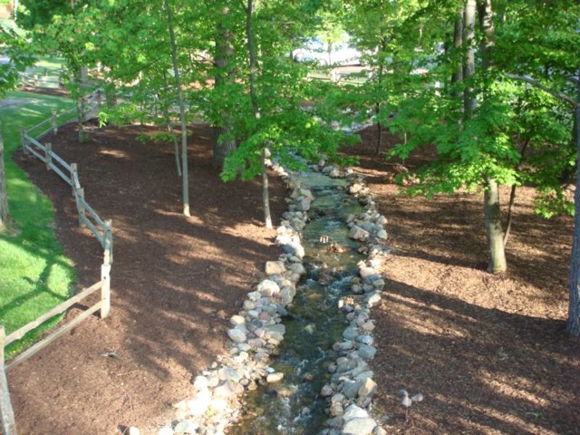 Green Tree Landscaping Rockford Il : Tree work dixon sterling rock falls rockford freeport